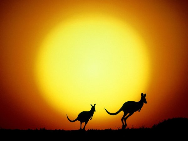 N°1 à faire en Australie