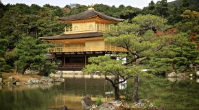 7 choses à faire au Japon