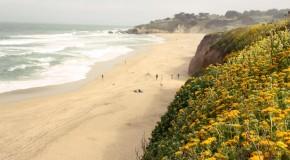 La côte californienne: de San Francisco à Carmel